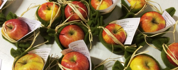 Apfel im Schlafrock - Präsent für die Besucher