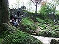 Wallfahrt nach Borgentreich (Bild 1308)