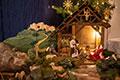 Advent und Weihnachten in St. Luzia (Bild 2518)