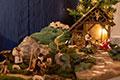 Advent und Weihnachten in St. Luzia (Bild 2519)