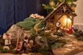Advent und Weihnachten in St. Luzia (Bild 2520)